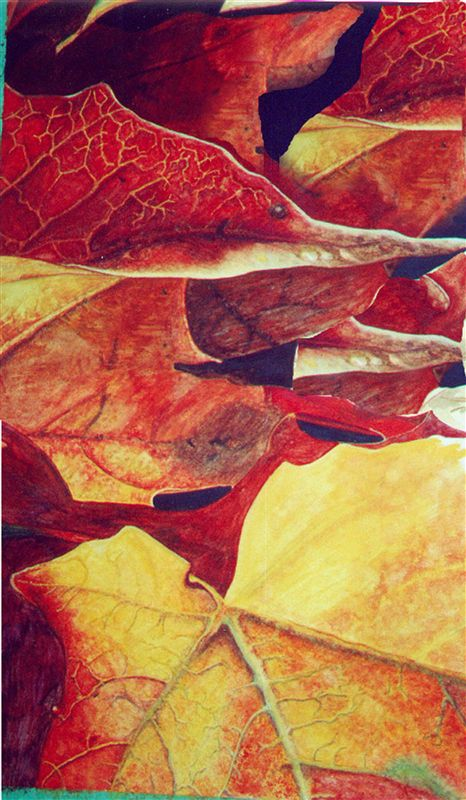 Abstracting Fall Leaves in Watercolour -- Aurora Cultural Centre