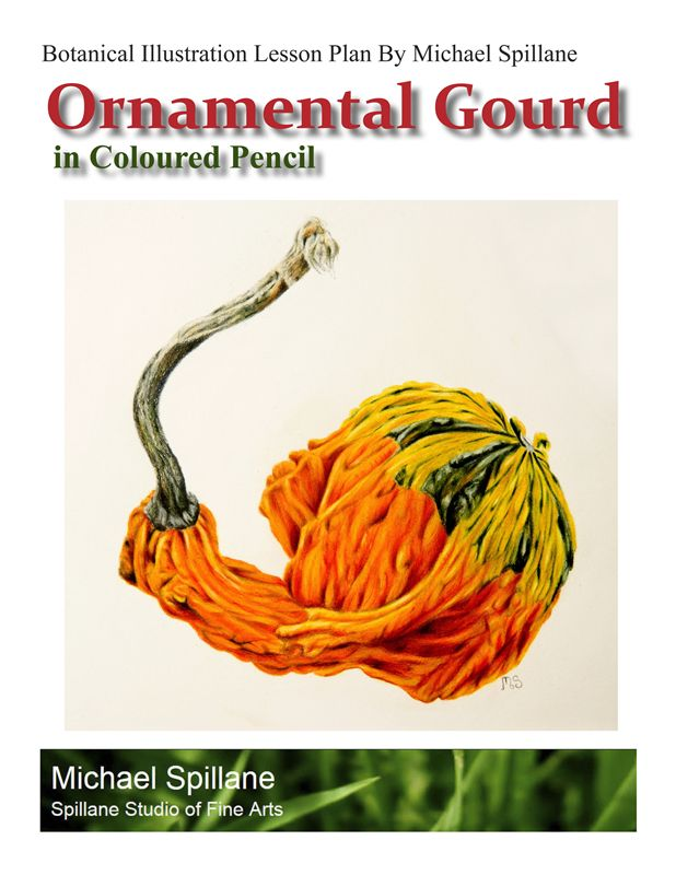 Ornamental Gourd in Coloured Pencil Project Package