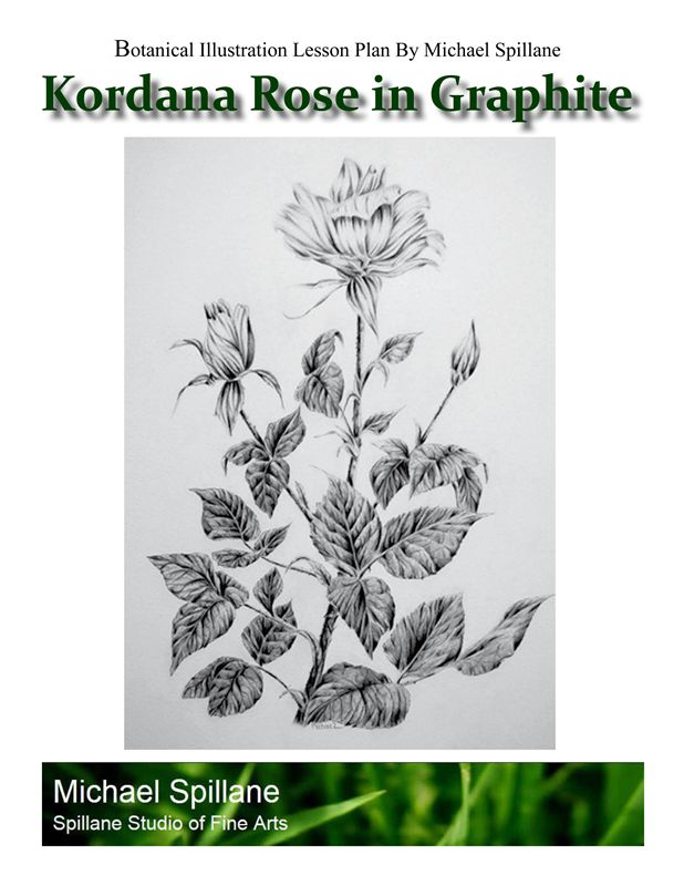 Kordana (miniature) Rose in Graphite Project Package