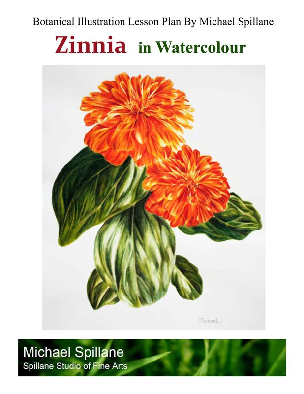 Zinnia in Watercolour Project Package