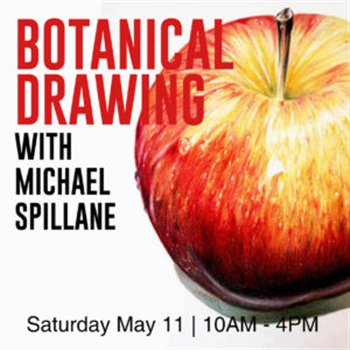 May 11, 2019 -- Botanical Drawing -- Apple in Coloured Pencil -- Elora Centre for the Arts