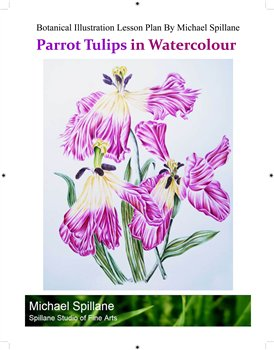 Fading Parrot Tulips in Watercolour -- Project Package
